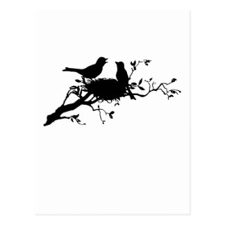 Carte Postale Nid d'oiseau