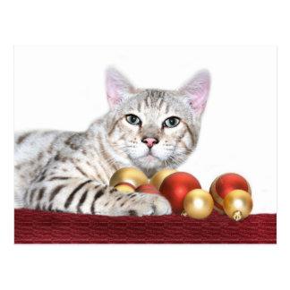Carte Postale Noël de chat du Bengale