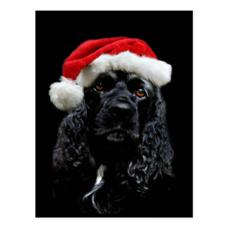 Carte Postale Noël de cocker