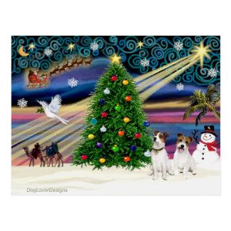 Carte Postale Noël Jack magique Russell Terrier (deux)