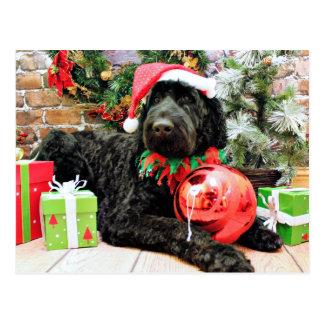 Carte Postale Noël - Schnoodle - Zeus