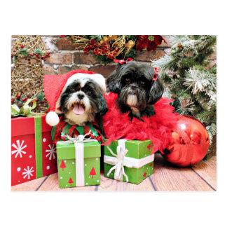Carte Postale Noël - Shih Tzu - Riley et ruches