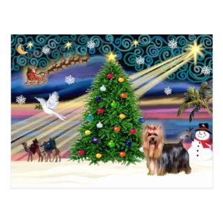 Carte Postale Noël Yorkshire Terrier magique #9