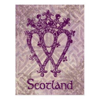 Carte Postale Noeud celtique pourpre de Luckenbooth d'écossais