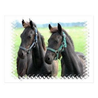 Carte postale noire de conception de chevaux
