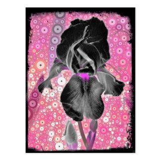 Carte postale noire d'iris