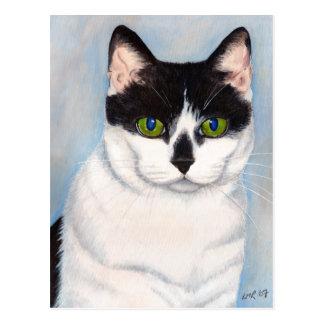 Carte postale noire et blanche de portrait de chat