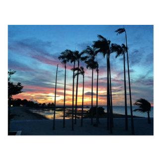 Carte Postale Noix de coco à la plage