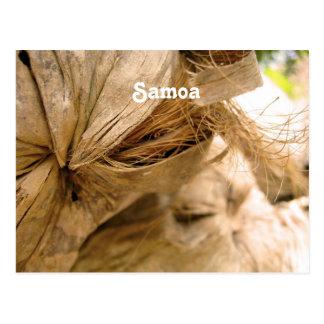 Carte Postale Noix de coco du Samoa