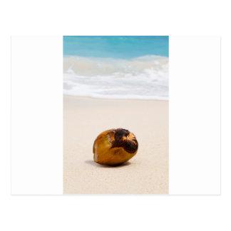 Carte Postale Noix de coco sur une plage tropicale
