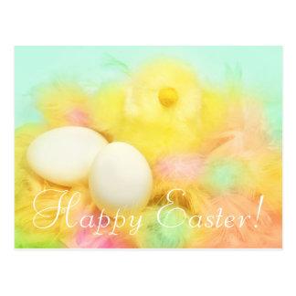 Carte postale nouveau-née de Pâques de poulet