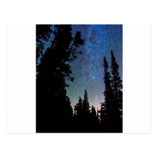Carte Postale Nuit de forêt de montagne rocheuse
