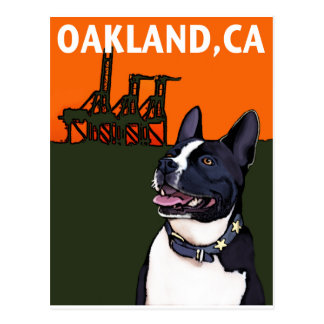 Carte Postale OAKLAND, chien de CA - Harry