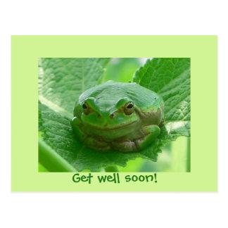 Carte Postale Obtenez la grenouille verte de puits bientôt -