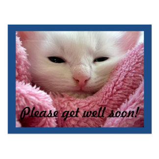Carte Postale Obtenez le chaton bon