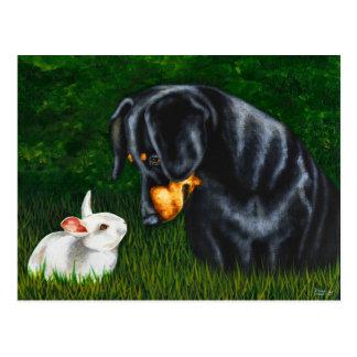 Carte Postale Oeil de Pâques à observer - chien et lapin de