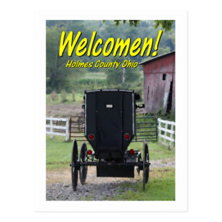Carte Postale OHCA101.Amish Buggie - Holmes Co OH