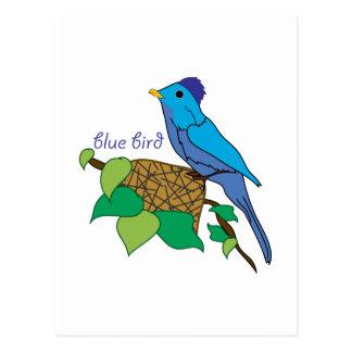 Carte Postale Oiseau bleu