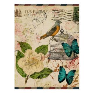 Carte Postale oiseau botanique de Français de cage à oiseaux de