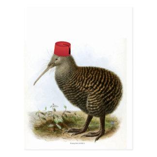 Carte Postale Oiseau de kiwi portant le cru absurde de Fez