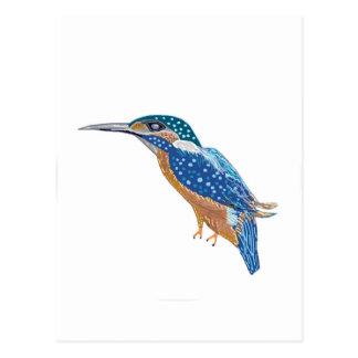Carte Postale Oiseau de martin-pêcheur