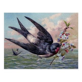 Carte Postale Oiseau mignon d'hirondelle de rouge bleu et jolies