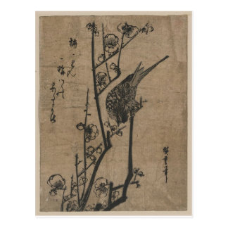 Carte Postale Oiseau sur la branche de prune