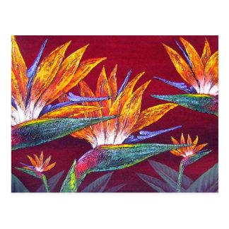 Carte Postale Oiseaux de la fleur tropicale de paradis - multi