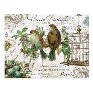 Carte Postale Oiseaux et cage à oiseaux français vintages
