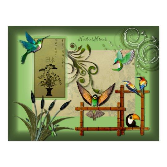 carte postale oiseaux nature