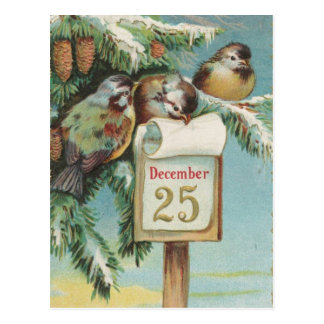 Carte Postale Oiseaux sur Decemeber 25ème