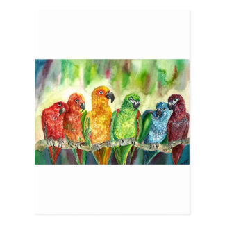 Carte Postale Oiseaux tropicaux
