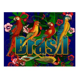 Carte Postale Oiseaux tropicaux floraux du Brésil
