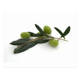 Carte Postale Olive