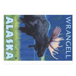 Carte Postale Orignaux la nuit - Wrangell, Alaska