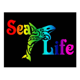 Carte Postale Orque de vie marine