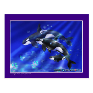Carte Postale orques