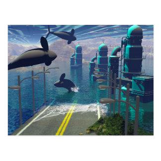 Carte Postale Orques de vol