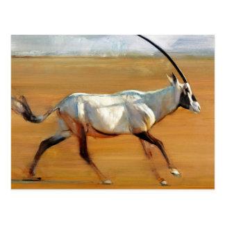 Carte Postale Oryx galopant 2010