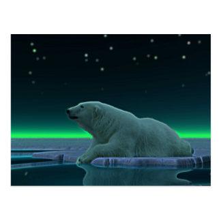 Carte Postale Ours blanc de bord de glace