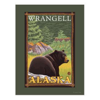 Carte Postale Ours noir dans la forêt - Wrangell, Alaska