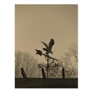 Carte Postale Palette de temps d'Eagle de ton de sépia