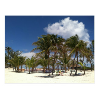 Carte Postale Palmiers bleus de lagune