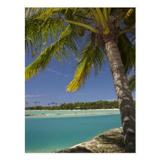 Carte Postale Palmiers et lagune, île-hôtel de crique de