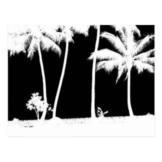 Carte Postale Palmiers noirs et blancs