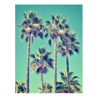 Carte Postale Palmiers vintages tropicaux