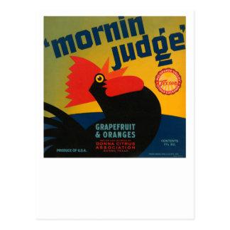 Carte Postale Pamplemousses et oranges de juge de Mornin