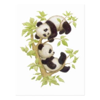 Carte Postale Pandas jouant dans un arbre