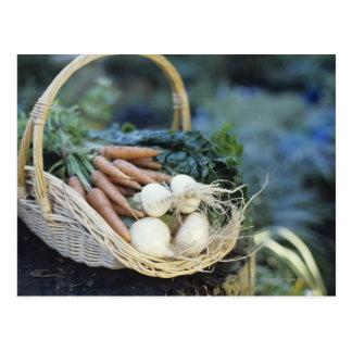 Carte Postale Panier des navets et des carottes, fin