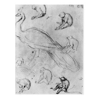 Carte Postale Paon et six singes